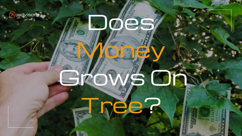 Does money grows on tree