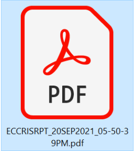 Downloaded eCCRIS report